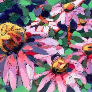 Echinacea Blooms